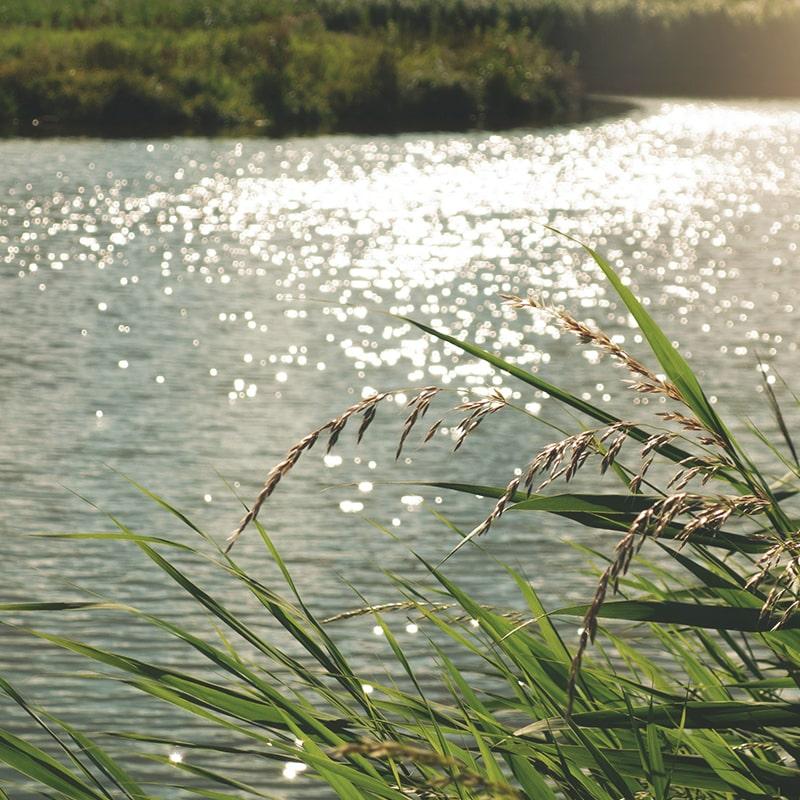 Reka kot vir vode